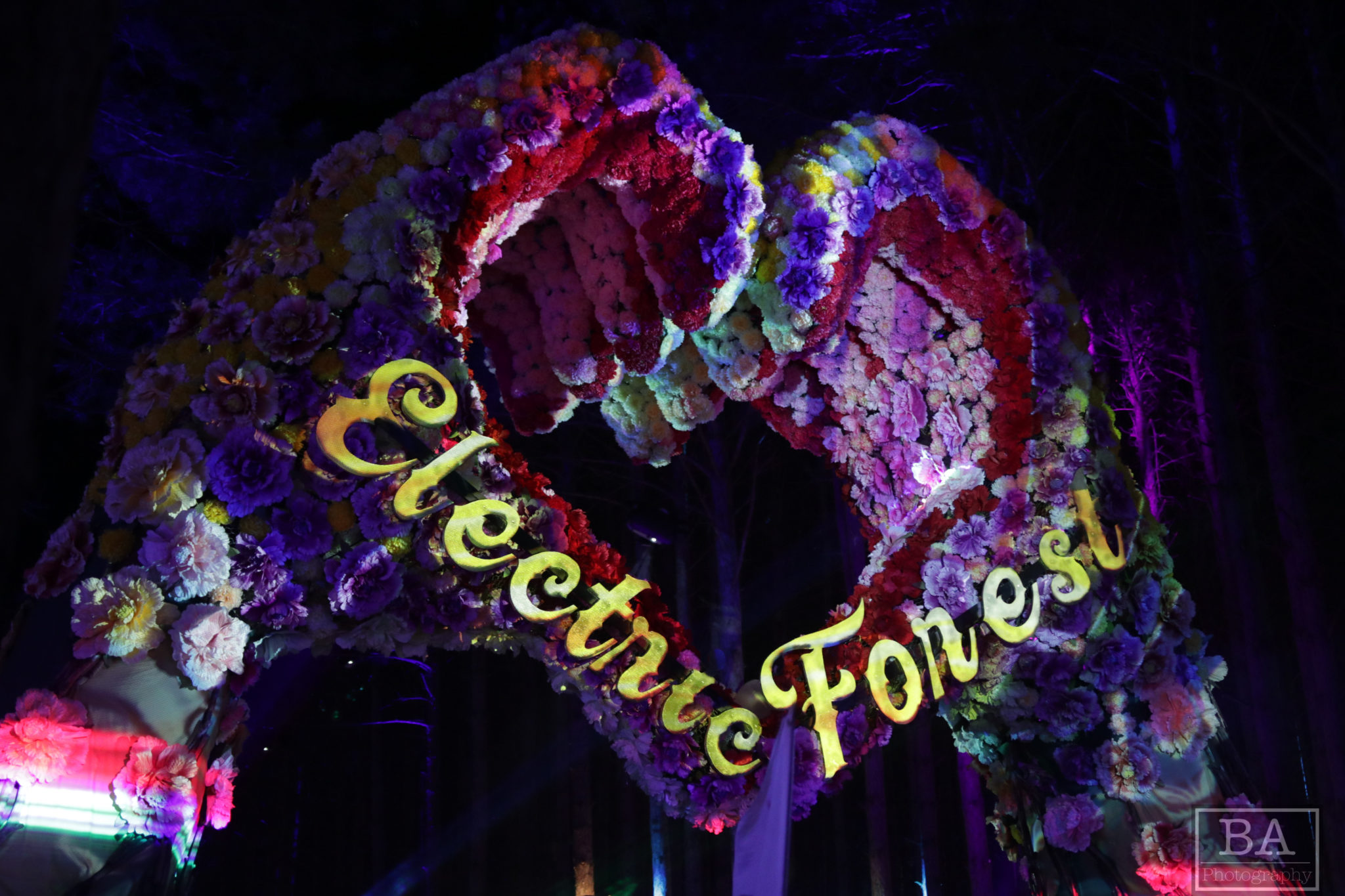 Electric Forest Heart Hands